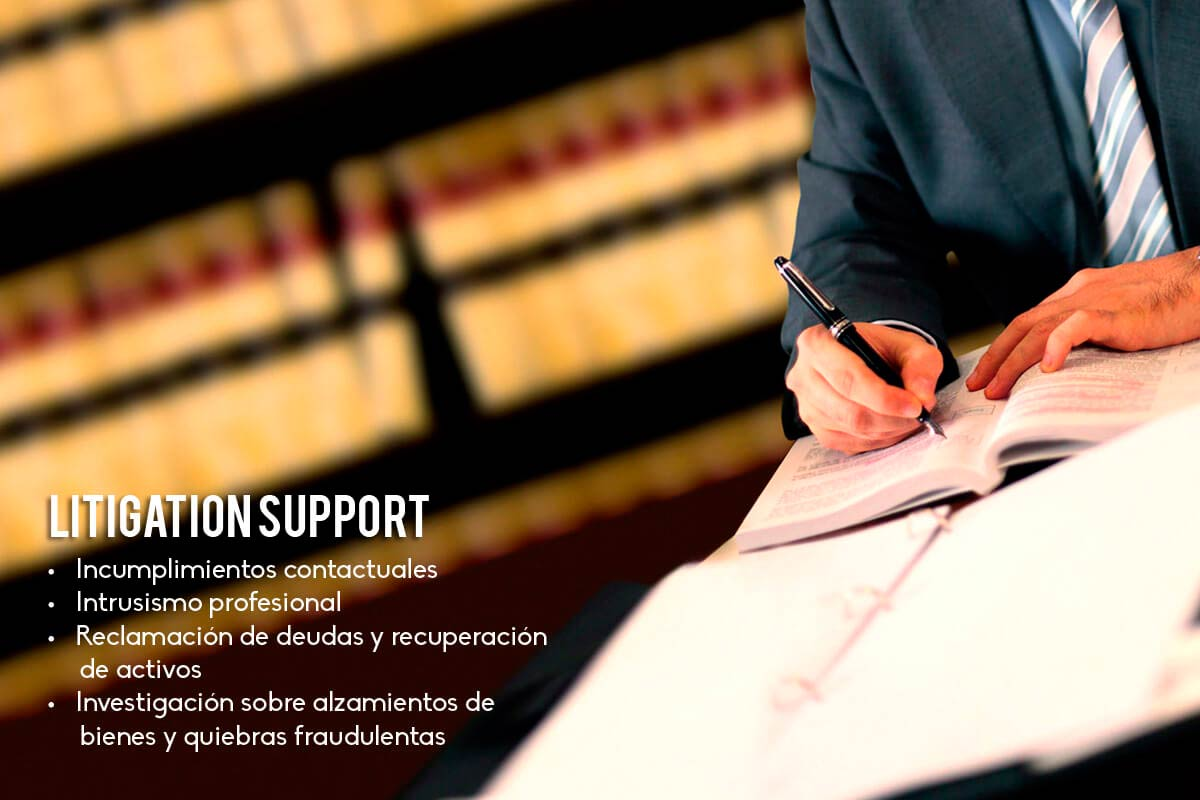 ctx-litigation-support