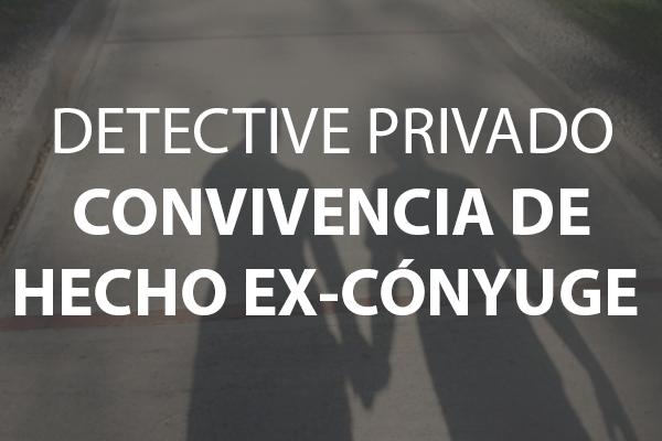 detective privado convivencia de hecho ex-conyuge
